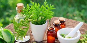 naturopathie et productivité